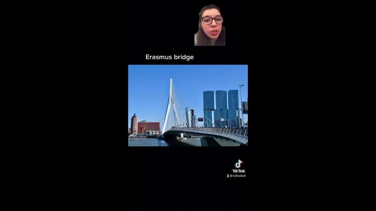 Rotterdam virtual visit